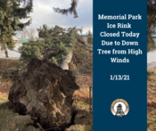 Memorial Ice Rink Closed Due to Down Tree